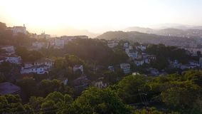 Rio de Janeiro city aerial view video footage. Favelas hills. Sunset backlight. From above. The camera takes off over a large flowering tree stock footage