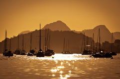 Rio de Janeiro Harbor royaltyfri bild