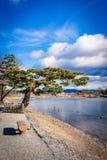Rio de Kamogawa (Kyoto, Japão) Imagem de Stock