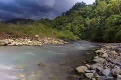 Rio de Khichdi, Corbett Tiger Reserve, Uttarakhand, Índia foto de stock royalty free
