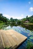 Rio de Lotus Imagens de Stock Royalty Free
