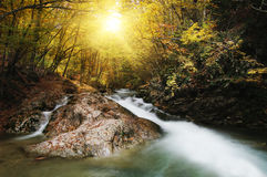 Rio de madeira Imagens de Stock Royalty Free