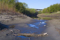 Rio de Minnesota e bancos arborizados fotografia de stock royalty free