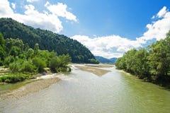 Rio de Moldova no verão Imagens de Stock Royalty Free
