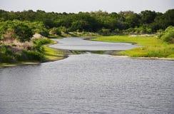 Rio de Myakka Imagens de Stock