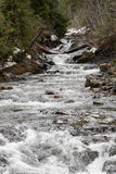 Rio de Nisqually no inverno Fotos de Stock