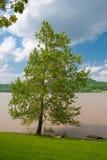 Rio de Ohio enlameado foto de stock royalty free