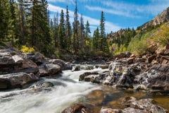 Rio de Poudre, garganta de Poudre, Colorado Fotografia de Stock