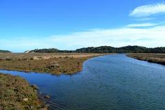 Boca do rio e do oceano imagem de stock