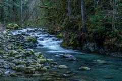 Rio de Quilcene em Autumn After Rain fotografia de stock