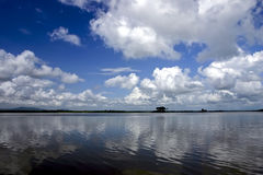 Rio de Rufiji em Tanzânia do sul Imagem de Stock