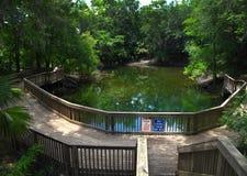 Rio de Suwannee - furo de natação da zona 3 fotografia de stock royalty free