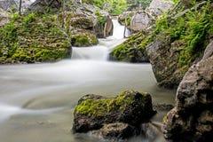 Rio de Sydenham rio abaixo das quedas de Inglis imagens de stock