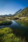 Rio de Tairua Imagem de Stock