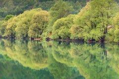 Rio de Una em Bósnia fotos de stock