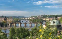 Rio de Vltava com as grandes pontes em Praga Imagem de Stock