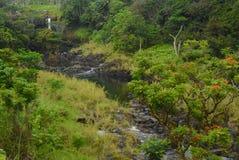 Rio de Wailuku Foto de Stock