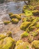 Rio de Whitewater foto de stock