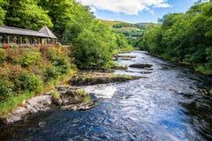 Rio Dee cercado com árvores, Gales Imagens de Stock Royalty Free