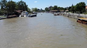 Rio del tigre Immagini Stock Libere da Diritti