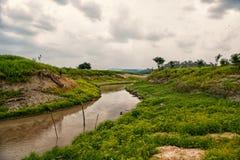 Rio delle Amazzoni in boca de Valeria, Brasile Flusso del Rio delle Amazzoni su paesaggio tropicale sul cielo nuvoloso Natura e v fotografia stock