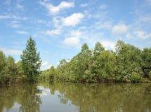 Rio derramado Ob durante a inundação fotografia de stock royalty free
