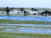 Rio dividido de Chobe, parque nacional de Chobe, Botswana Foto de Stock Royalty Free