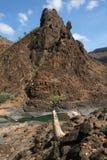 Rio do barranco Daerhu no console de Socotra imagem de stock royalty free