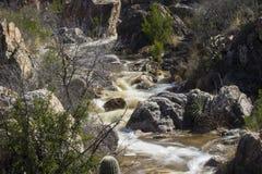 Rio do deserto Fotografia de Stock Royalty Free