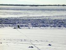 Rio do inverno Foto de Stock