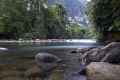 Rio do parque nacional de Gunung Mulu em Bornéu, Malaysia imagens de stock