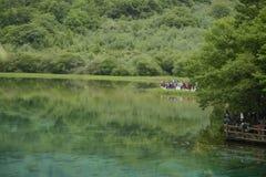 Rio do pavão de Jiuzhaigou Fotografia de Stock Royalty Free