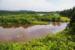Rio do pombo no parque estadual grande de Portage Fotos de Stock