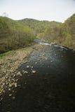 Rio do pombo, Tennessee do leste Fotos de Stock