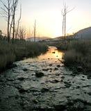 Rio do por do sol Foto de Stock Royalty Free