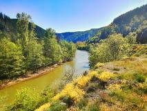 Rio do Struma, Bulgária, natureza Foto de Stock