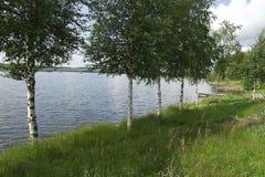 Rio do vidoeiro, paisagem, Finlandia Fotos de Stock
