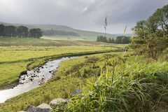 Rio dos vales de Yorkshire Imagem de Stock