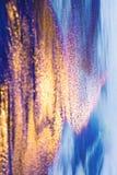 Rio dourado através do oceano