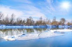 Rio e árvores na estação do inverno Imagem de Stock Royalty Free
