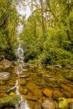 Rio e cachoeira que correm através de rochas do molde verde fotografia de stock royalty free