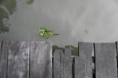 rio e cais fotos de stock