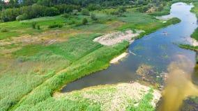 Rio e campos do zangão Pouco rio de cima de vídeos de arquivo