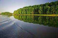 Rio e floresta foto de stock