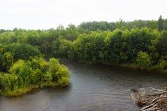 Rio e floresta em Rússia fotos de stock royalty free