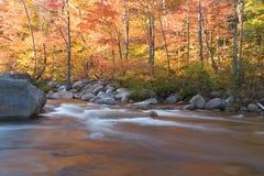 Rio e folha de queda, de New-Hampshire (horizontal) Fotografia de Stock