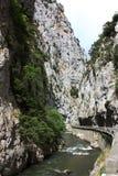 Rio e garganta em Pyrenees Fotografia de Stock