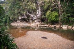 Rio e gruta na floresta tropical do santuário de Khao Sok, Thail Fotos de Stock