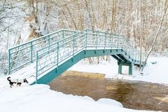 Rio e ponte do inverno Fotos de Stock