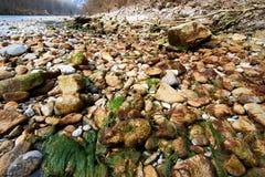 Rio em Europa Áustria com pedras imagens de stock